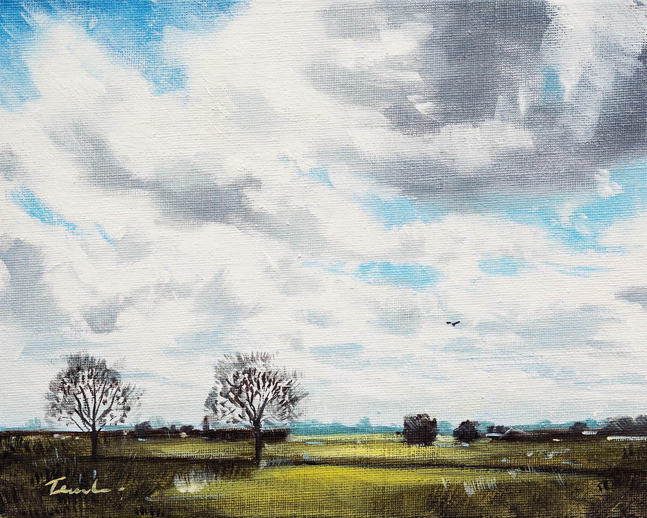 Fenland Sky from Bourne Road - Nick Tearle Fenland Artist