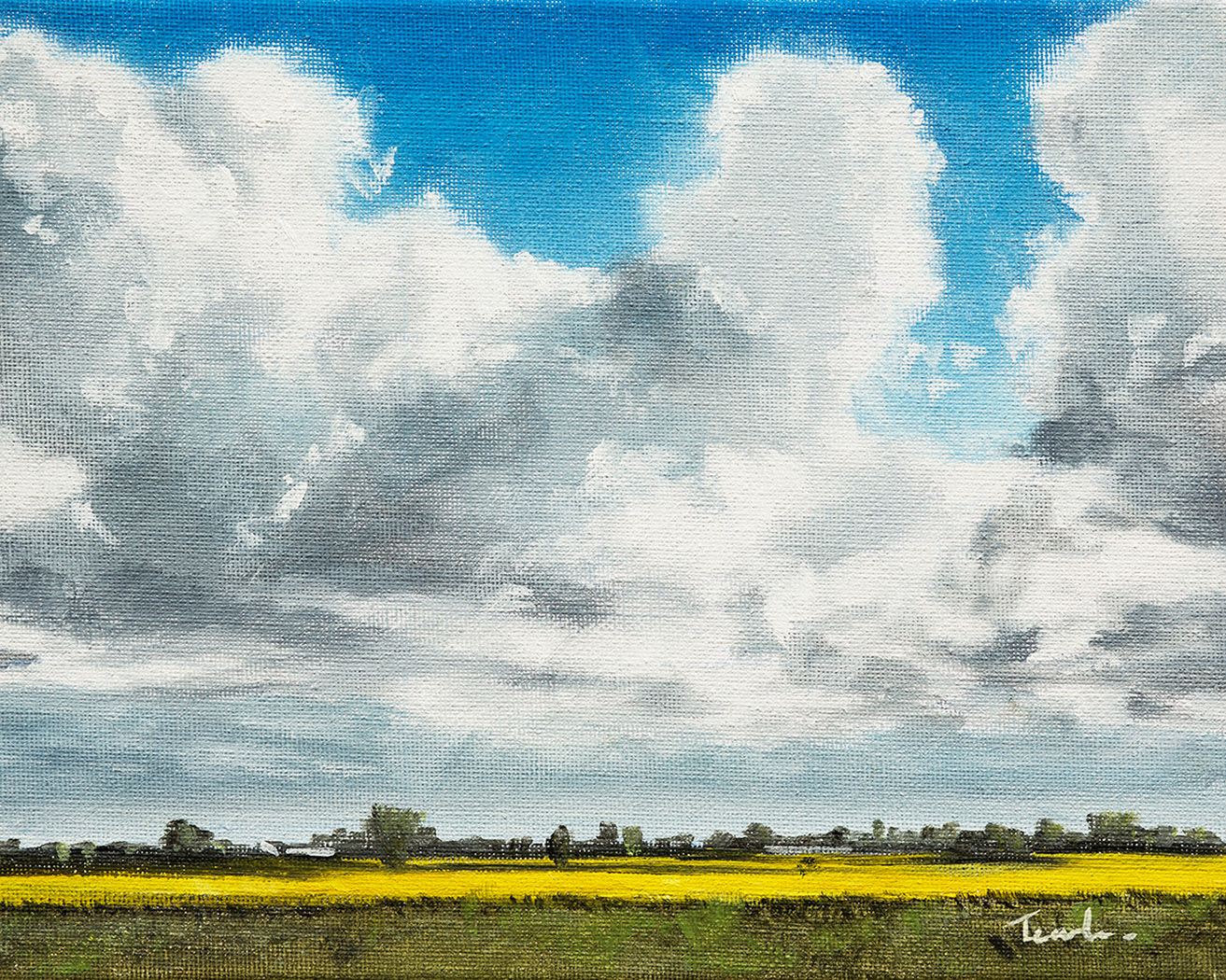 Fenland Sky over Bottom Fen Farm - Nick Tearle Fenland Artist