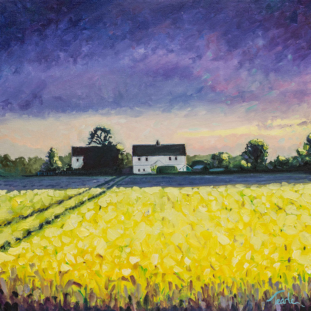 Houses near Etton - Nick Tearle Fenland Artist