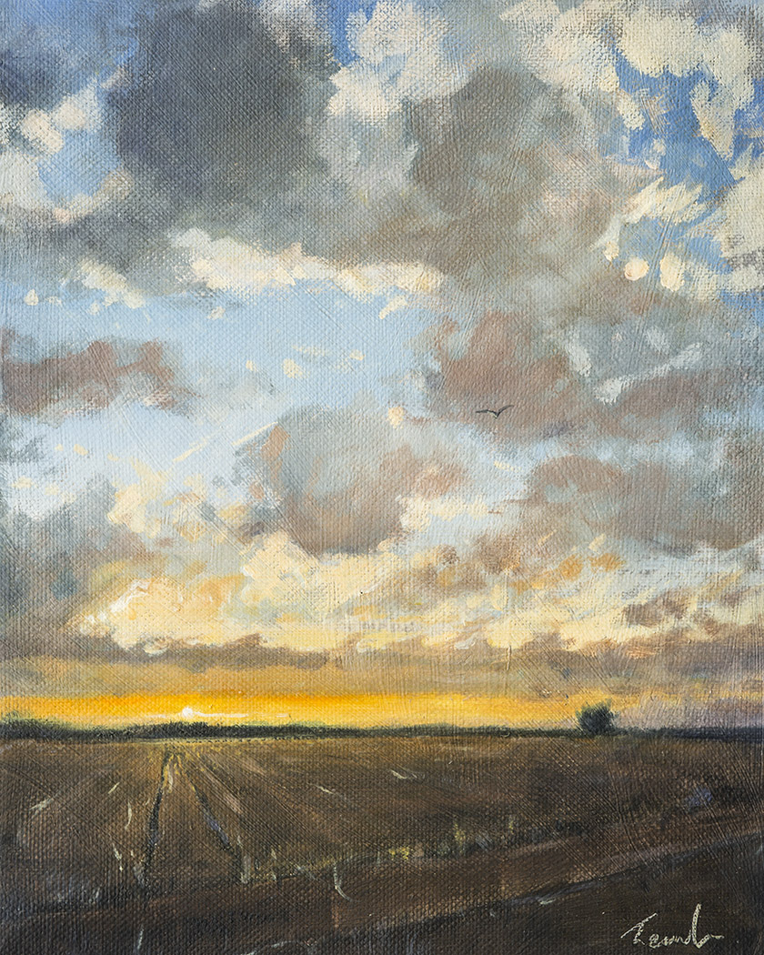 Sunset in The Fens - Nick Tearle Fenland Artist