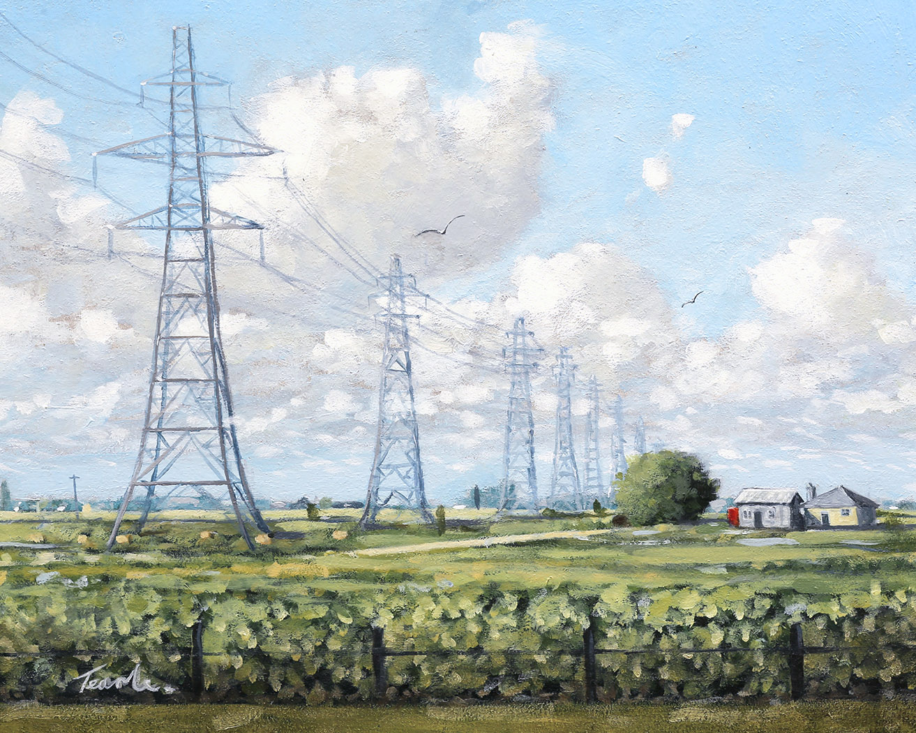 The Flatlands of Cambridgeshire - Nick Tearle Fenland Artist