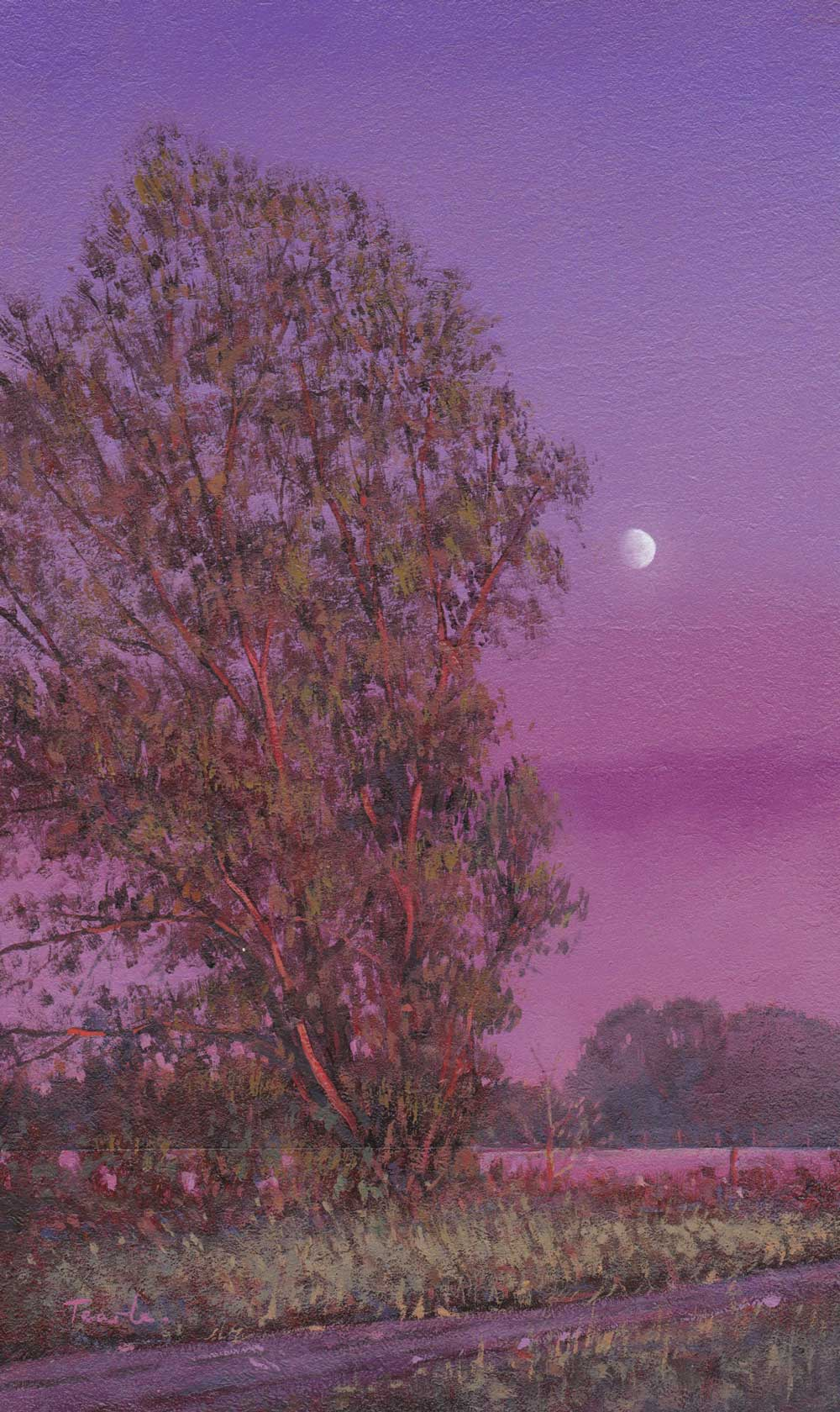 Willow Tree at Dusk - Nick Tearle, Fenland Artist