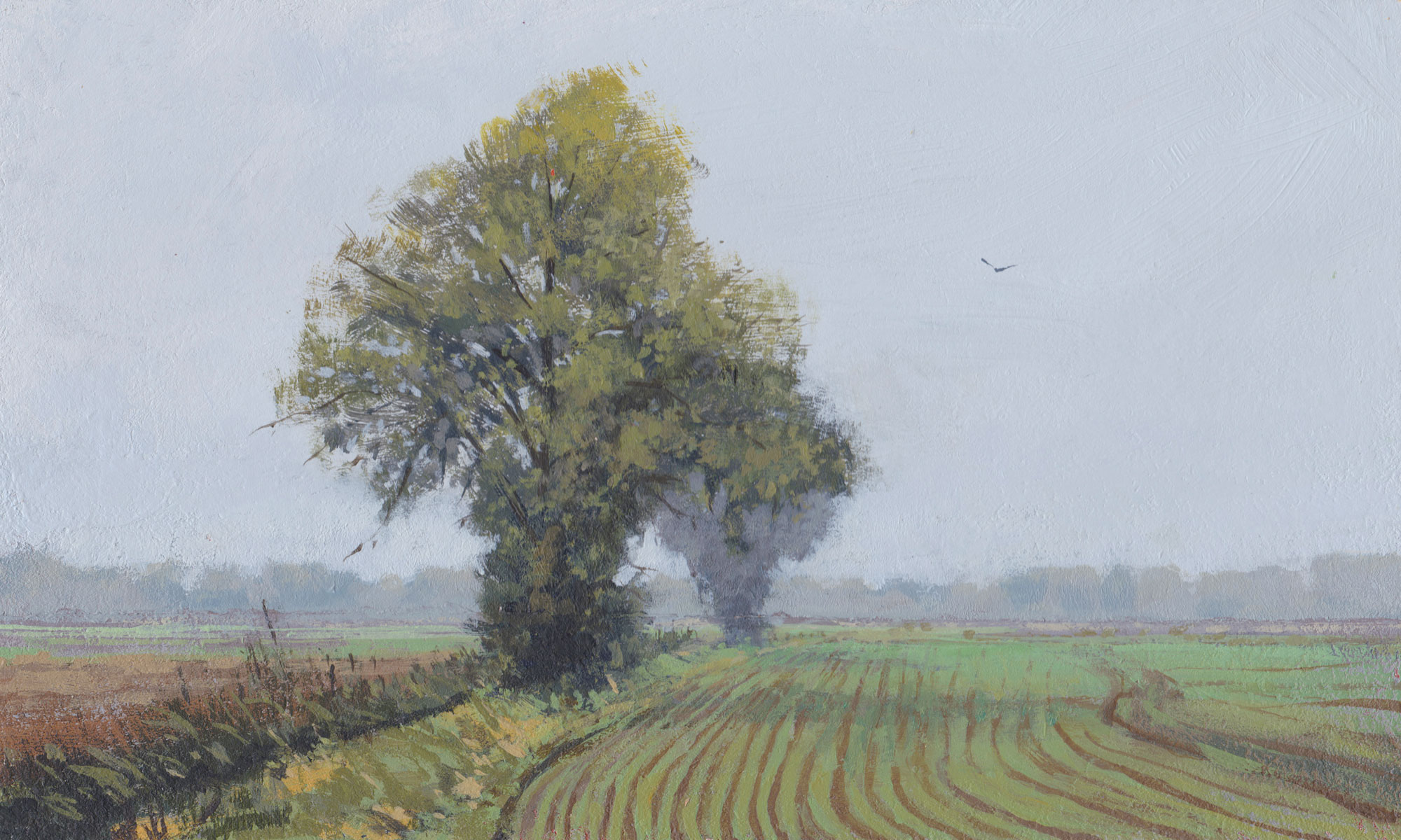 Acrylic painting titled 'Fenland Field' by Nick Tearle Fenland Artist